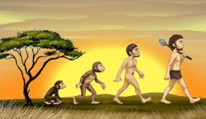 ABOUT THE THEORY OF EVOLUTION  ON THE ORIGINS OF MAN